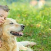 גזעי כלבים טיפוליים