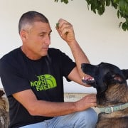 קורס מאלפי כלבים דרור בר אל