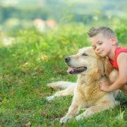 לימודי כלבנות טיפולית מרכז אופק