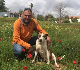 דרור קורס אילוף כלבים מרכז אופק