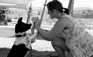 מה זה כלבנות טיפולית ?