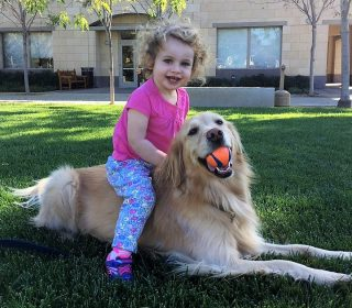 תינוק חדש בבית עם כלב