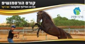 מרכז אופק אילוף סוסים