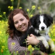 כלב טיפולי מרכז אופק