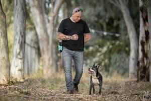קורס אילוף כלבים חיובי מרכז אופק