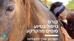 טיפול בסיוע סוסים מהקרקע מרכז אופק