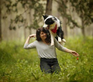 לימודי אילוף כלבים קורס אילוף כלבים