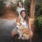 קורס כלבנות טיפולית