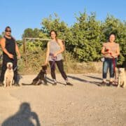 קורס אילוף כלבים כלבנות 360